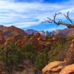 Zion National Park hiking trail: The Overlook | Zion National Park. Overlook Zion on one of many hikes in Zion. Explore Zion National Park hiking trail.