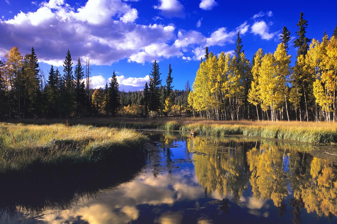 Duck Creek Village Utah >> Duck Creek Utah Photography | Craig Primas Gallery | Duck Creek Village Utah