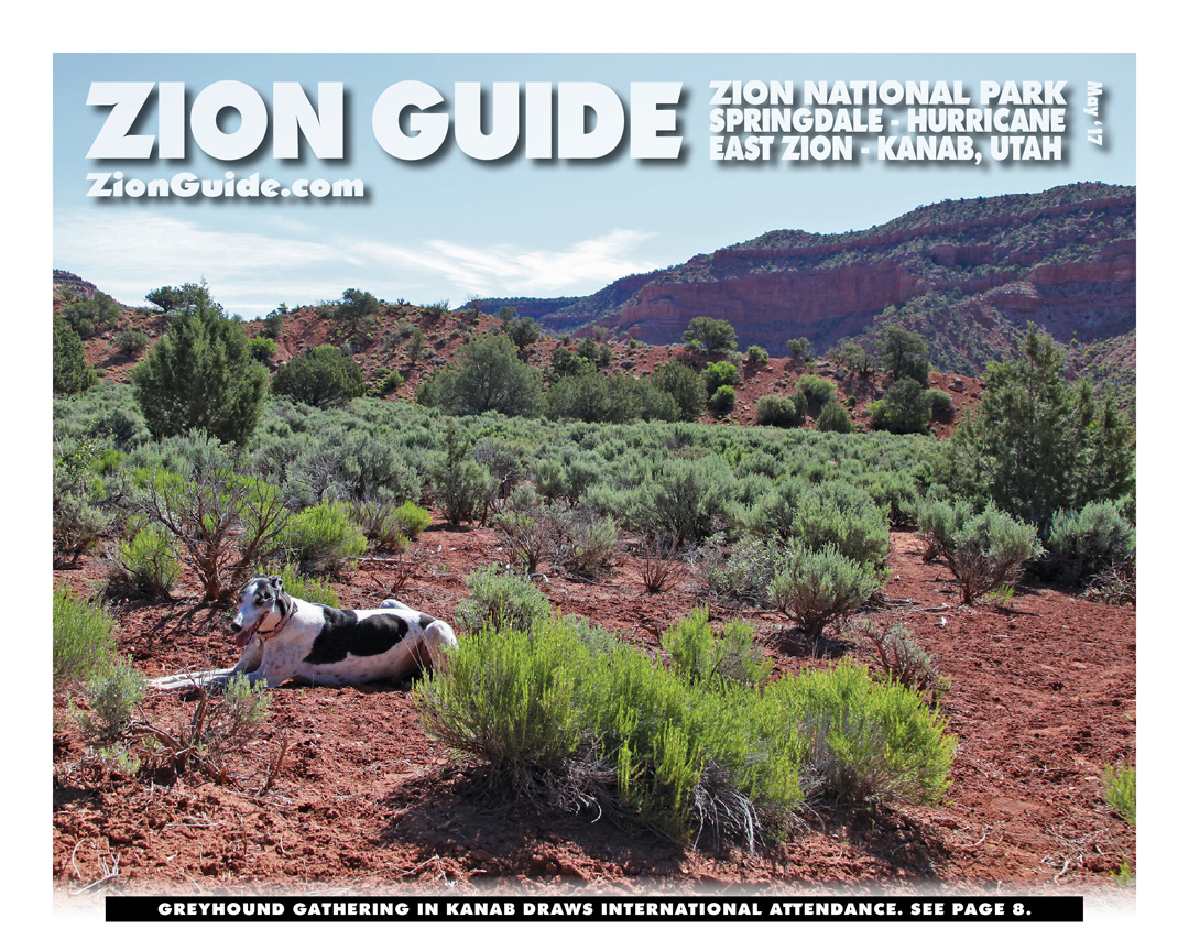 Zion National Park Guide | May 2017